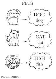 Nomi Degli Animali In Inglese Portale Bambini
