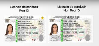 Rico Driver's How Luxury License To Obtain Puerto A In -
