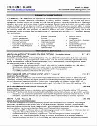 Executive Resume Templates Word Executive Resume Template Word Fresh Executive Resume Template 5