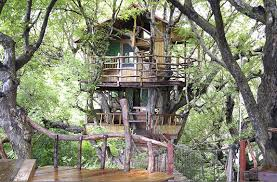 tree house living screen shot sanya nanshan treehouse resort screenshot  atpm sanya nanshan treehous