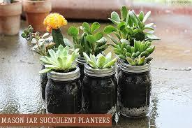 Bring Summer Indoors: Mason Jar Succulent Planters  Best Of, DIY,  Featured, Gardening