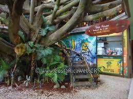 Tree Houses Hotel Costa Rica Bed Breakfast  Sleep In Costa Rican Treehouse Monteverde Costa Rica
