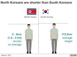 Korean Weight Chart Nine Charts Which Tell You All You Need To Know About North