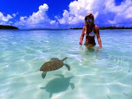 Tide Chart Green Turtle Cay Bahamas Bluff Resort Marina Green Turtle Cay Bahamas Booking Com