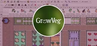 allotment planning companion planting