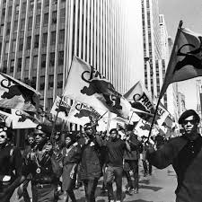 Black Panther Party Origins and History