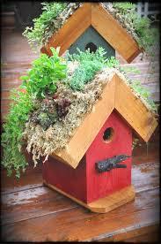 rebecca s bird gardens blog diy living roof birdhouse redhouse