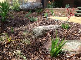 Small Picture Australian Native Garden Design Northern Beaches Landscapers Sydney