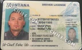 Premium Montana Maker Id Cards Id-chief Fake