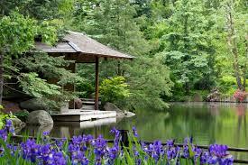 Japanese Garden Anderson Japanese Gardens Rockford Il Top Tips Before You Go