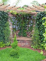 How To Plant Climbers  Planting Climbers Against Walls And Fences Wall Climbing Plants