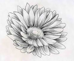 Small Picture The 25 best Pencil drawings tumblr ideas on Pinterest Easy