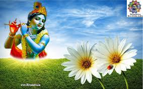 Sri Krishna Ultra HD Wallpaper 4K ...