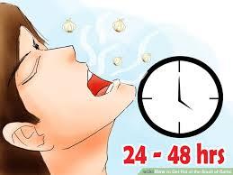 Getting Rid Of Odors getting rid of odors - home design