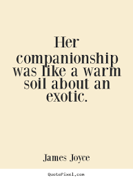 Companionship Quotes Classy Quotes About Love Her Companionship Was Like A Warm Soil About An