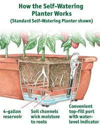 ... Self Watering Planter Box Diagram
