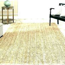 how to clean outdoor carpet rug home depot indoor roll patio roller re