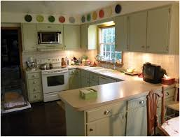 Green Kitchen Cabinet Doors Kitchen Green And White Kitchen Cabinets 1000 Ideas About Green