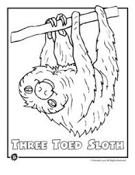Small Picture Toucan Coloring Page Worksheets Kindergarten and Coloring