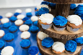 9 Blue And White Wedding Cupcakes 1 Alison Dunn Photography