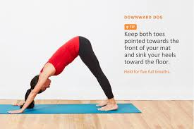 woman doing downward dog pose