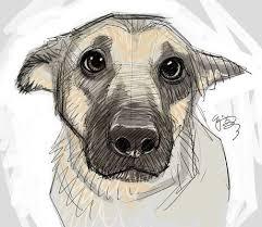 Drawn Animal Cool Animal Pencil In 2019 Animal Drawings