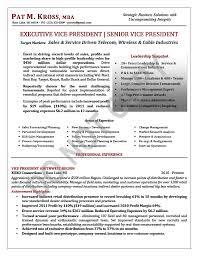 Executive Resume Sample Evp Vp Sales Resume Sample Page 1