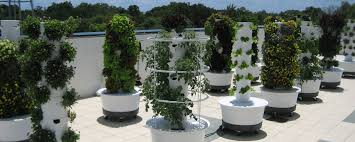 what is a tower garden