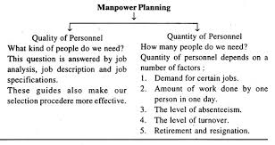 essay on manpower planning top essays process personnel  essay 4 process of manpower planning