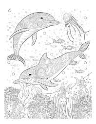 018331a26df6a41d65540f6c0dfa4e51 coloring pages for adults the ocean 25 best ideas about adult coloring on pinterest watercolor on all time low coloring pages