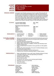 entry level media sales resume media resume template