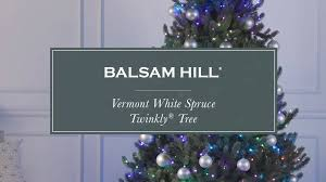Balsam Hill Light String Out Vermont White Spruce Twinkly