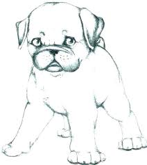 Dog Coloring Pages To Print Realistic Dog Coloring Pages Printable