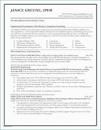 Retail Resume Objective Examples 25 Examples Resume Objective For Retail Resume Template