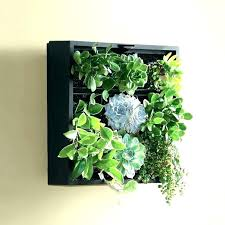 wall mounted planters wall planters indoor wall planters indoor m wall hanging ceramic planters for indoor indoor wall planters canada wall mounted planters