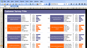 Customer Satisfaction Survey Template Excel Excel Customer Survey Template