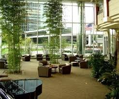 interior landscaping office. Interior Landscaping Office U
