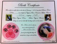 dog birth certificates birth certificate pa fresh dog birth certificate template puppy