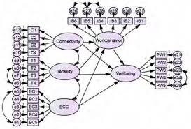 figure 3 structural equation modeling amos values explain that the model is significantly fit and
