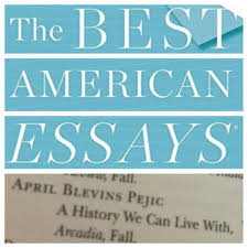 best american essays writers alliance  blevins pejic bae