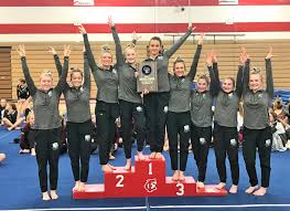 Gymnastics Team Wins Sectional Championship – Hudson Schools