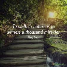 Famous Quotes On Nature Beauty Best of Pin By Paige Prater On Natural Beauty Pinterest Motivation And
