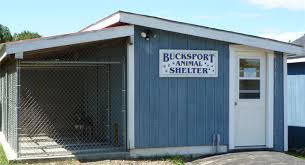 animal shelter buildings. Brilliant Animal Animal Control Throughout Shelter Buildings