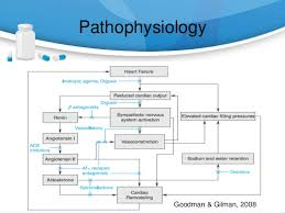 Pathophysiology Of Chf Use Of Diuretics In Congestive Heart Failure Pptx