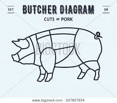 Cut Meat Set Poster Vector Photo Free Trial Bigstock