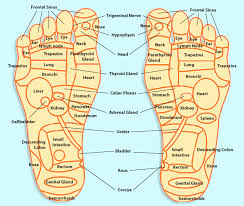 Reflexology Pressure Points Chart