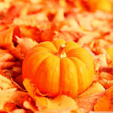Leaves And Pumpkins Background ...