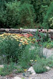 Tips For Gardening In A Drought Garden Design Stunning Gravel Garden Design