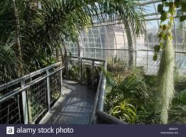 inside the us botanical garden in washington dc