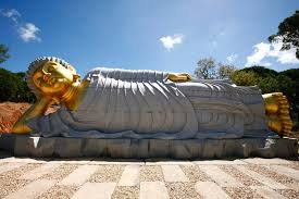 buddha eden jardim da paz garden of